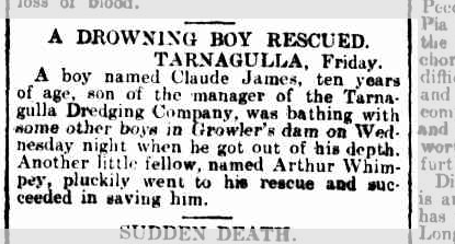 Drowning boy rescued