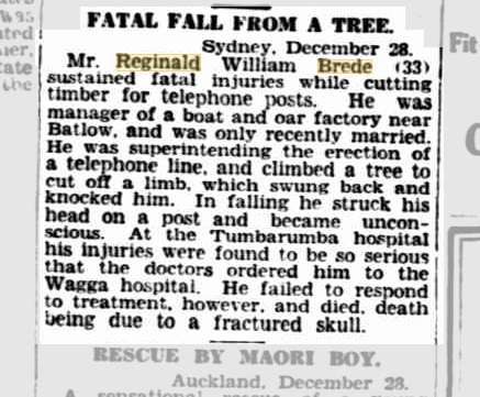 Fatal Fall From a Tree