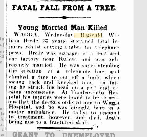 Fatal Fall From a Tree Young Married Man Killed