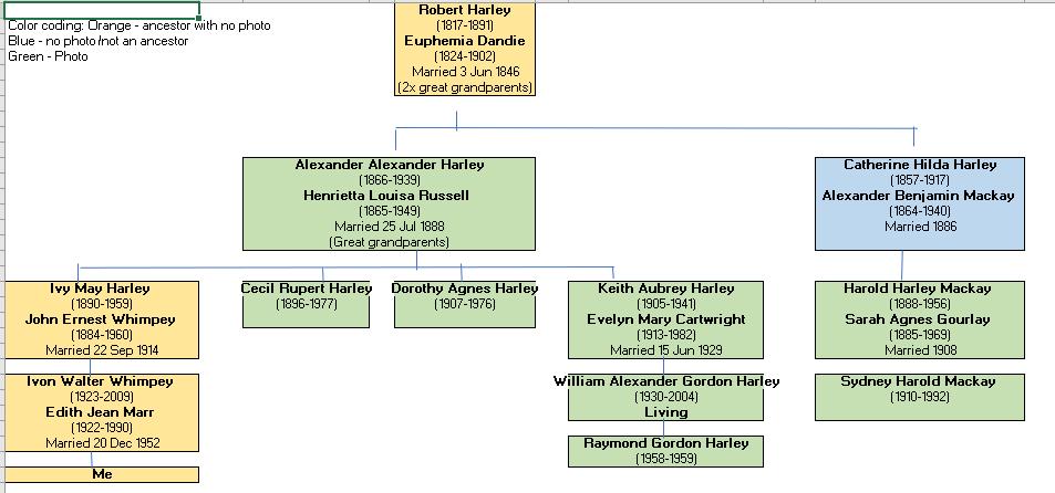 Harley Mackay tree